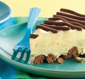 Fudge recipes using condensed milk
